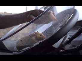 The Hamster Stunt: The Viral Film