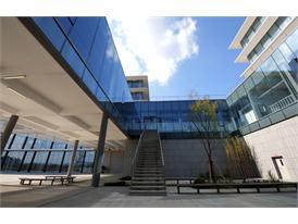Alibaba Campus 7