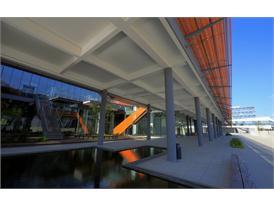 Alibaba Campus 10