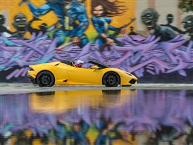 LP610 4 Yellow 081