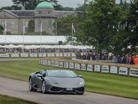 Goodwood festival of Speed 2016 (4)