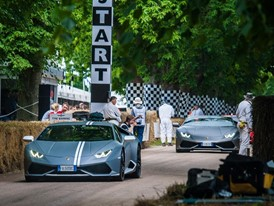 Goodwood festival of Speed 2016 (9)