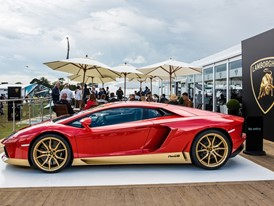 Goodwood festival of Speed 2016_Hi(3)