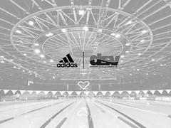 adidas und der DSV geben Partnerschaft bekannt