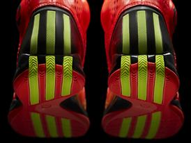 D Rose 3.5, Infrared-Electricity, Detail 5