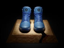 D Rose 3.5, Triple Blue, Hero 3