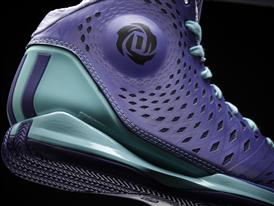 D Rose 3.5, Murray Park Winter, Detail 2