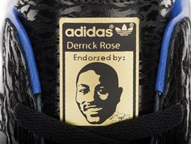 Derrick Rose Birthday Shoe