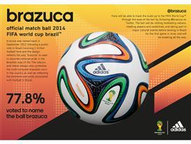 Infographic - brazuca Intro