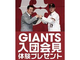 giants 01