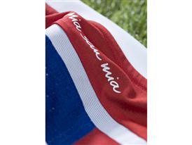 FC Bayern´s Home kit 3
