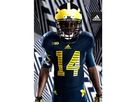 adidas Michigan Go Blue Jersey