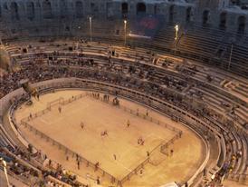 Predator Arena 17