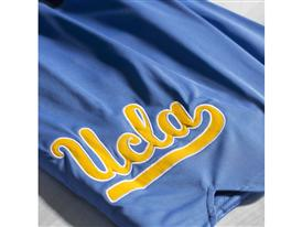 UCLA 6