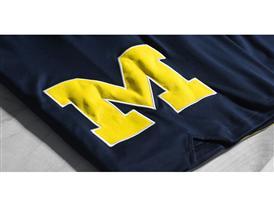 Michigan 3 H