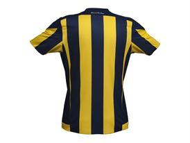 Fenerbahçe Futbol 4