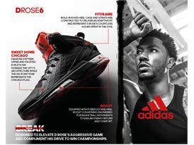 D Rose 6 Infographic