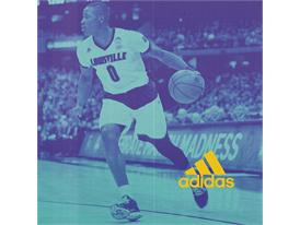 adidas Terry Rozier, Sq, 1