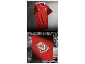 21252 JD Fed Kits 1000x2000mm Wales Home Shirt