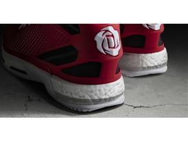 D Rose 6 Home Detail 1 H (F37129)