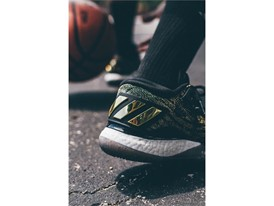 Crazylight 2016 Black-Gold (B39061) 21