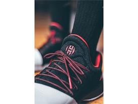 adidas HardenVol1 Pioneer BW0546 Gym 19