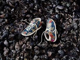 adidas Originals = PHARRELL WILLIAMS Jacquard Pack 2 (4)