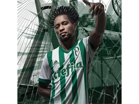 Palmeiras away jersey - Zé Roberto
