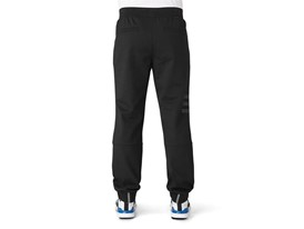 adicross jogger - Back