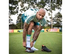 Predator 18 - Players - Felipe Melo