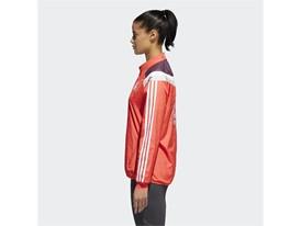 2018 adidas BM Celebration Jacket