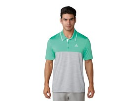 UP Heather blocked Polo green grey