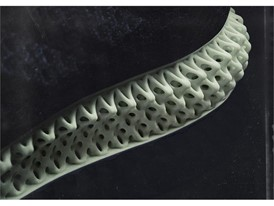 FUTURECRAFT 4D DETAIL HIGHLIGHT MIDSOLE