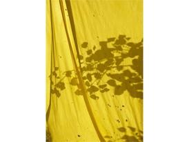 +H21254 adidas Originals PHARRELL WILLIAMS Hu Holi adicolor Key Visual Environmental Shot Yellow