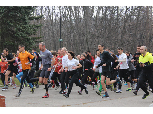 adidas, 5kmrun and Sportal