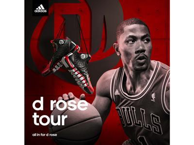 D Rose Tour in Asia
