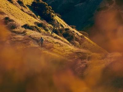 LA Trails - Wear Your Story