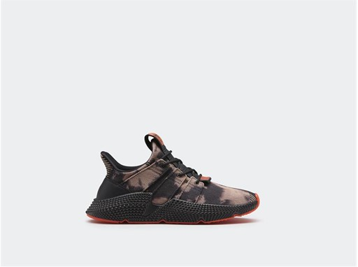 Prophere_DB1982_1