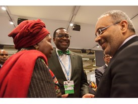 Africa Pavilion at COP21 Opening 1