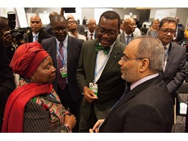 Africa Pavilion at COP21 Opening 2
