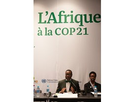 Africa Pavilion at COP21 Opening 11