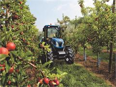 Fruit Focus gives warm welcome to new Boomer 50 from New Holland