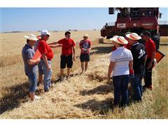 Case IH organises in field training technical workshops on harvesting equipment in Seville for dealers from all over Europe