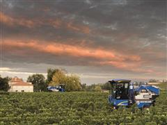 New Holland Launches New Grape Harvester Braud Compact Range for the Intermediate and Large Row spacing Vineyard Segments