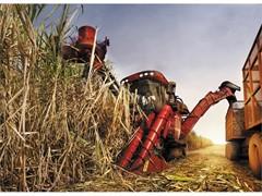 凯斯甘蔗收获机 — 东南亚甘蔗行业的重要合作伙伴
