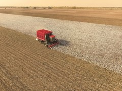 Case IH machinery destined for Uzbek cotton fields