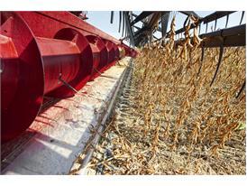 Case IH Axial-Flow Combine Harvester
