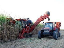 Case IH Green Fuel Sugar Cane Harvester