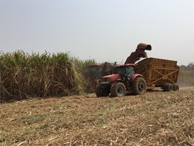 Driving Africa's Growth: SOMDIAA Chooses CASE IH for its Cameroon Sugar Cane Plantations