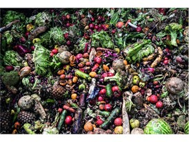 Waste food from supermarkets and the food industry can be fed into the biodigester